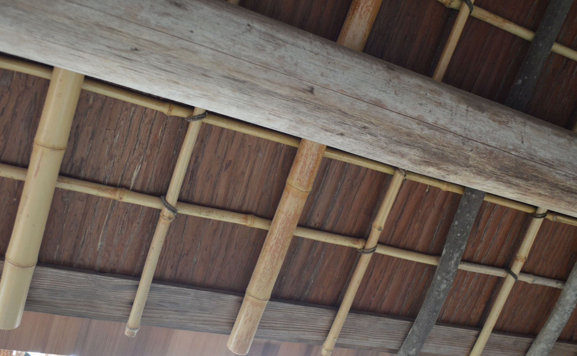 Many tree varieties used for the eave rafters