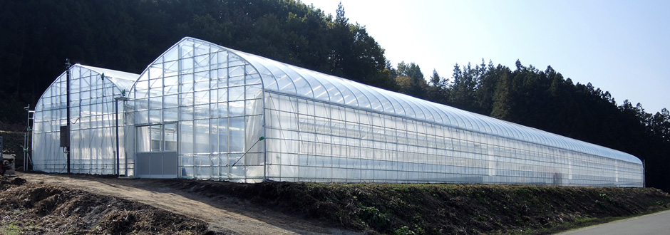 Greenhouses for agricultural use
