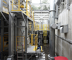 Biomass gasification cogeneration system